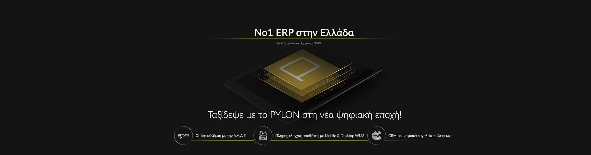 pylonERP_gr